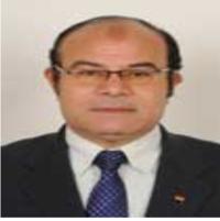حسين محمود محمد عشماوى